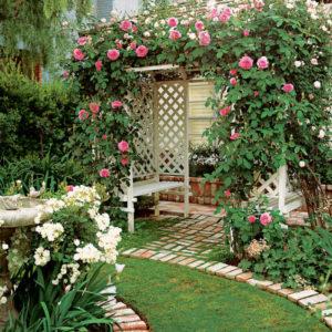 перголы постоянные объекты сада